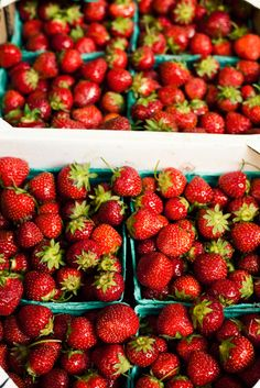 summer = strawberries <3