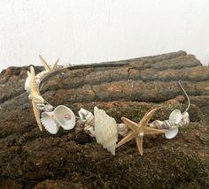 Beach Wedding Crown, Seashell Starfish snails Freshwater pearls Tiara, Sea accessory, wedding accessory, Mermaid Hair Accessories, natural on Etsy, $38.67 CAD