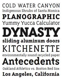 Triplex Serif by Zuzana Licko