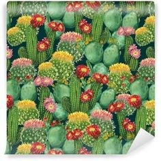 pattern with blooming cactuses Pixerstick Wallpaper ✓ Easy Installation ✓ 365 Day Money Back Guarantee ✓ Browse other patterns from this collection! Self Adhesive Wallpaper, Wallpaper Roll, Pattern Wallpaper, Green Cactus, Cactus Plants, Cacti, Cactus E Suculentas, Kitchen Artwork, Plant Painting
