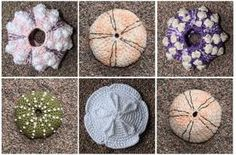 free crochet sand dollar pattern - Google Search