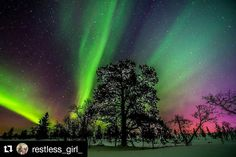 """27 Likes, 3 Comments - Aurora Borealis Notifications (@auroraborealisnotifications) on Instagram: """"#Repost @restless_girl_ with @repostapp ・・・ Stil believe in magic?  Oh, yes I do Yes I do... ✨ •…"""""""