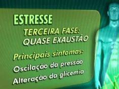 Vídeo sobre estresse: panicoeansiedade.com