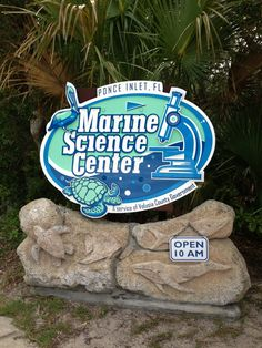 Low cost activity while in Daytona Beach- several marine wildlife exhibits, Sea Turtle Rehab. Center