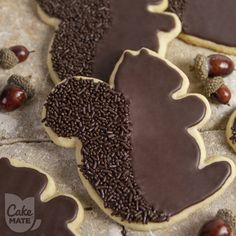 """Check out this amazing Squirrel shaped Sugar Cookie coated in Chocolate! Some of our favorite squirrels are Rocket J. Squirrel (Rocky) from Rocky and Bullwinkle, and """"Squirrel"""" (Dean) from Supernatural! How about it, Winchester boys? What do you think? :)"""