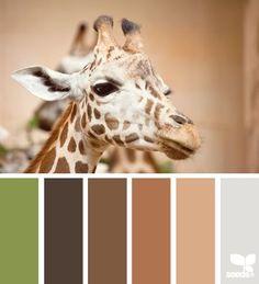 Giraffe tones - by Design Seeds Colour Pallette, Color Palate, Colour Schemes, Color Combos, Color Tones, Design Seeds, Safari, Giraffe Colors, Colour Board