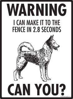 Check out our latest Exterior Warning! Canaan Dog Property Patrolled Aluminum Dog Signs and Vinyl Stickers Fence Signs, Dog Signs, Pet Dogs, Dogs And Puppies, Pets, Canaan Dog, Dog Thoughts, Dog Nails, Pet Photographer