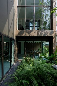 Studionomad has built Lom Haijai, block of five apartments in Bangkok, each with its own tree growing through the louvres of the facade. City Architecture, Residential Architecture, Timber Battens, Screen Plants, Concrete Facade, Small Terrace, Ground Floor Plan, Balcony Design, Design Within Reach