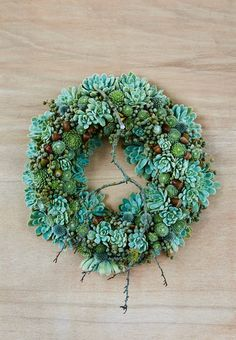 Beautiful and green Christmas wreath with brown acorns, houseleek and succulents.