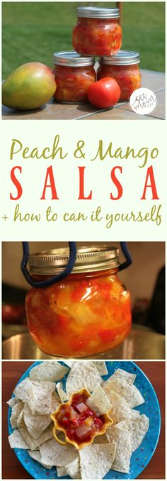 This is my favorite way to use up those garden tomatoes! Here's my Peach & Mango Salsa Recipe plus directions on how to can it yourself. If you're new to canning recipes, this is a great one to start with.