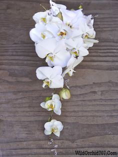 Cascade bridal bouquet made of white phalaenopsis orchids with crystal accents for a spring wedding at Paradise Ridge Wedding Flowers By The Wild Orchid in Sebastopol.  #wildorchid707 #sonomaweddings #sonomaflorist #weddingflowers #floraldesign #weddings #flowers #brides #weddingdecor #winecountryflorist #napaflorist  #weddinginspiration #sonomacountyweddingflowers #paradiseridge #orchids