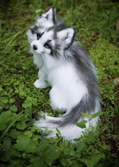 Handmade Poseable toy Arctic Marble Fox Fox plush Stuffed fox Fox toy Fox Soft Sculpture Stuffed toy Plush toy is part of Animals Hello everyone! I want to introduce to you my new - Baby Animals Super Cute, Cute Little Animals, Cute Funny Animals, Cute Cats, Baby Animals Pictures, Cute Animal Pictures, Animals And Pets, Farm Animals, Cute Fantasy Creatures