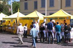 Parma Capitale Unesco per la Gastronomia: le iniziative di Coldiretti con Campagna Amica