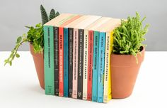 These cool new Plant Pot Living Bookends give the illusion that a terracotta…