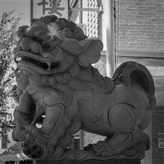 Female Chinese Guardian Lion outside a business in Chinatown. Female Lion, Stone Lion, Foo Dog, Yin Yang, Creepy Things, Palaces, Lions, Statues, Entrance