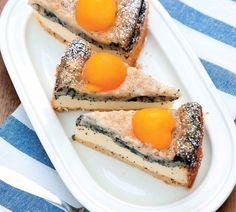 Tvarohovo-makový koláč s marhuľami