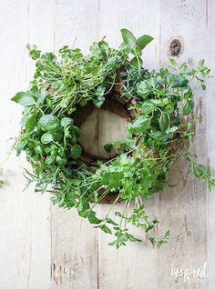 DIY Herb Wreath - functional and tasty decor via Inspired by Charm
