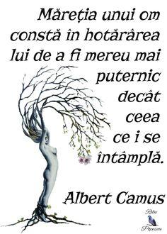 Spiritual Quotes, Book Quotes, Albert Camus, Philosophy, Qoutes, Mindfulness, Memories, Wii, Medicine