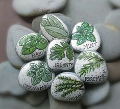 Herb Garden Markers Painted Rocks Set of 7 by Wildfreeillustration(Diy Garden Markers) Garden Labels, Plant Labels, Herb Labels, Garden Crafts, Garden Projects, Landscape Edging Stone, Culture D'herbes, Art Sur Toile, Plant Markers