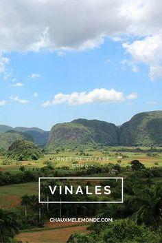 Visiter la région rurale, fertile et verdoyante de Vinales à l'ouest de La Havane et se détendre sur la plage de sable blanc de Cayo Jutias. C'est mon programme pour cet article sur Cuba. http://www.chauxmelemonde.com/vinales-terres-fertiles-et-vallee-verdoyante/