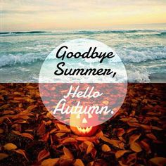 The last days of summer...