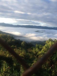 Una hermosa vista desde lo alto de la montaña en Utuado, Puerto Rico.