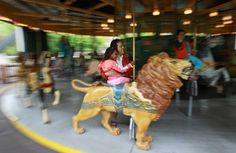 Owner of the cash-strapped amusement park says residents and visitors have until November 2017 to ride the Toronto attraction one last time. Centre Island, Toronto Star, Amusement Park, Year Old, Carousel, Attraction, November, Canada, History