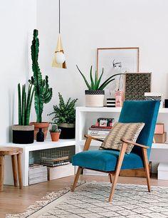 25 ideas de decoración con cactus y suculentas