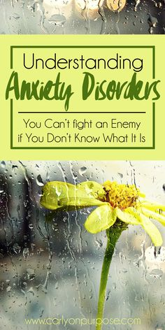 To beat anxiety you need to understand what an anxiety disorder IS. You can't fight the demons you don't understand, and you CAN treat anxiety!