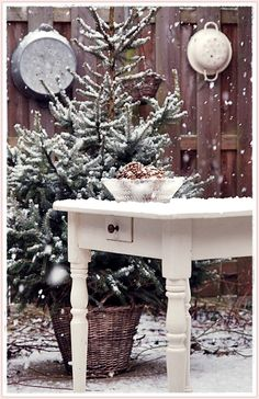 Lovely... saw some of mind covered in snow just yesterday..