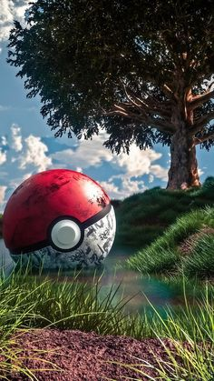 Catch them all. Pokemon Backgrounds, Cool Pokemon Wallpapers, Best Gaming Wallpapers, Cute Pokemon Wallpaper, Cute Cartoon Wallpapers, Animes Wallpapers, Phone Wallpapers, Phone Backgrounds, Ps Wallpaper