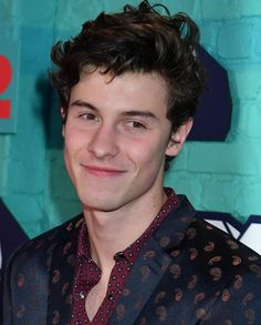 Shawn Mendes 2017 EMA Awards