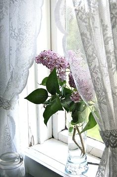 Um carinho debruçado na janela!!!... ~Sol ~.