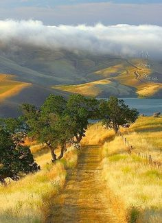 Vista Grande Trail, California.