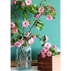 How To Force Flowering Branches Indoors ❤ liked on Polyvore featuring home, home decor, floral decor, flower stem, flower home decor, branch home decor and spring home decor