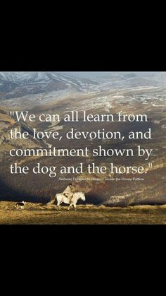 """We can all learn from the love, devotion, and commitment shown by the dogs and the horse.""  Anthony Douglas Williams - Inside the Divine Pattern. At the very least, don't let them down."