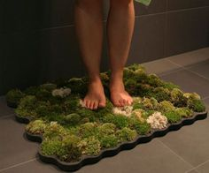 Living Moss Bath Mat  This bath mat houses three types of moss - island moss, forest moss and ball moss on plastazote, an imputrescible foam. The water dripping from the human body and the high humidity of the bathroom will provide the moss with perfect living conditions.