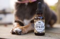 Organic Full Spectrum CBD Hemp Oil For Pets