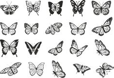 Butterfly Tattoos For Women, Small Butterfly Tattoo, Butterfly Clip Art, Butterfly Drawing, Butterfly Tattoo Designs, Butterfly Design, Butterfly Stencil, Finger Tattoos, Body Art Tattoos