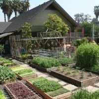 Learn How To Create Your Own 1-Acre Self-Sustaining Homestead