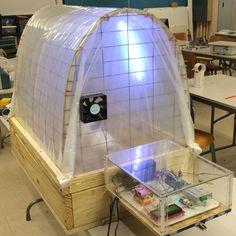 1000 Ideas About Mini Greenhouse On Pinterest