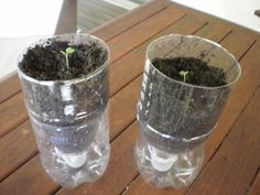 Recycling plastic bottles into self-watering planters