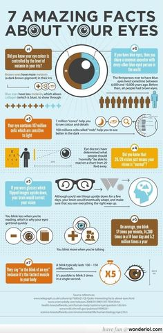 7 facts about eyes