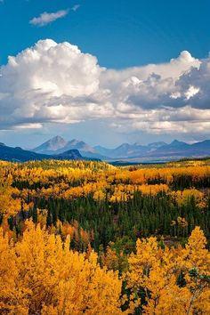 Denali National Park, Alaska. Photo: Mark Graf: