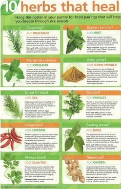 10 herbs that heal. Although I eat a tons of cilantro and am tired a lot. Interested to see how well this works...
