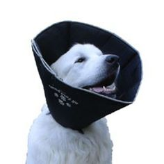 Comfy Cone Pet E-Collar Large Black Pet Supplies Near Me
