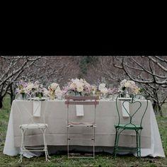 Wedding ideas..pretty
