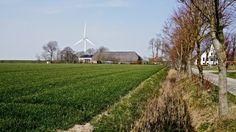 De buurtschap Bokum ligt ten noorden van Kleine Huisjes en Kloosterburen, aan de voet van een oude zeedijk. Tegenwoordig bestaat Bokum uit twee boerderijen: Oud Bokum (oostzijde) en Nieuw Bocum (westzijde). In het verleden heeft bij Bokum een steenhuis gestaan. Het geslacht dat daar woonde wordt voor het eerst genoemd in 1462 als 'Bokema'.<br>Boerderij Bocum werd in 1819 gesplitst in de (bestaande) boerderij Oud Bokum (rechts) en de (nieuwe) boerderij Nieuw Bocum (links).<br>De schuren van…