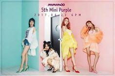 #MAMAMOO 5th Mini Album  #Purple