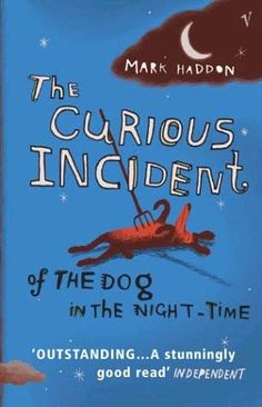 It is a novel written in 2003 in the first-person of a fifteen-year-old boy with autistic spectrum condition.